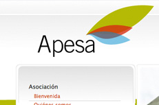 Asociación de comerciantes de Cangas del Narcea (APESA)