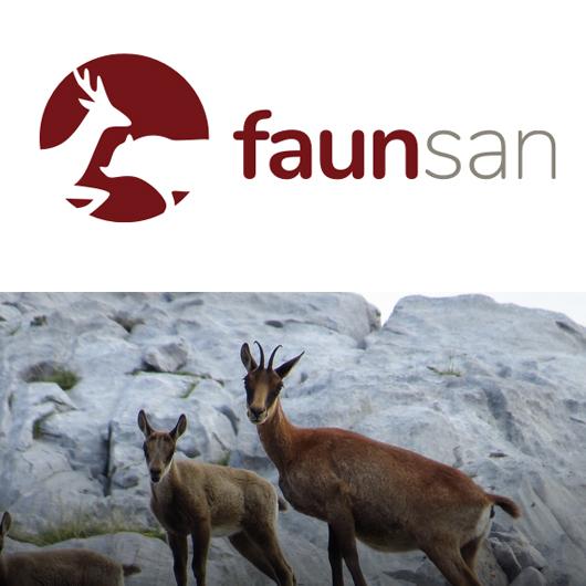 Faunsan