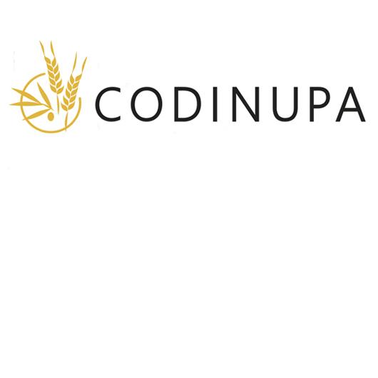 logo CODINUPA