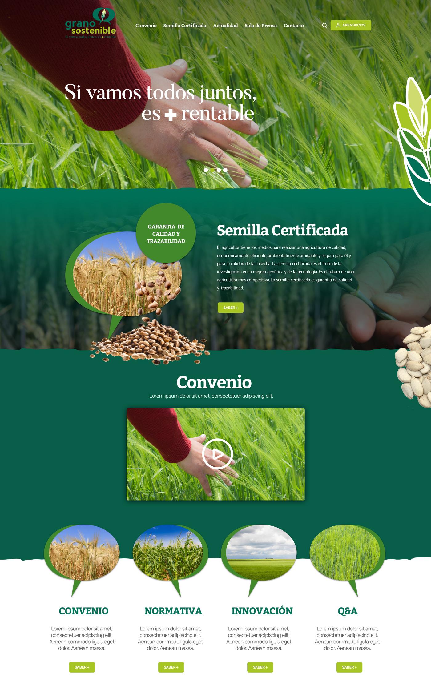 web grano sostenible